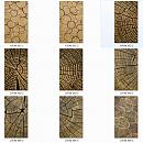 패션판넬보드(나이테) 2440×1220×[4.5~17.5]