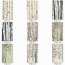 패션판넬보드(버치숲) 2440×1220×[4.5~17.5]